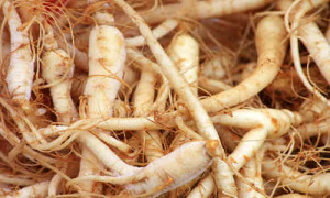 Ginseng remedio